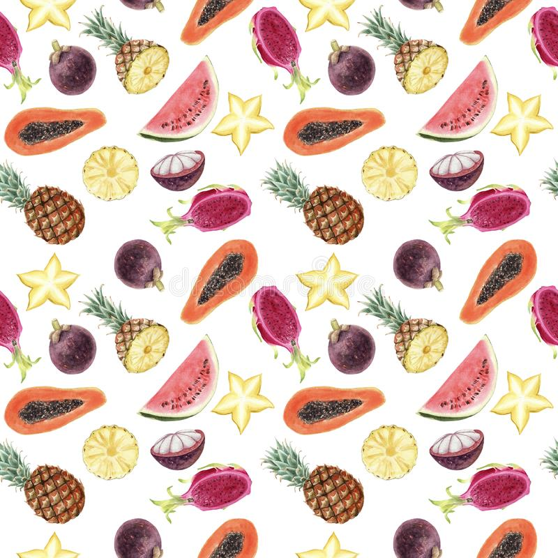Seamless hand drawn Watercolor Tropical Pattern on white background royalty free illustration
