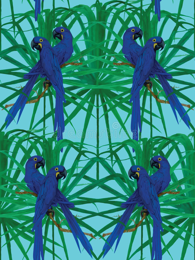 Seamless hyacinth macaw parrot pattern. vector illustration