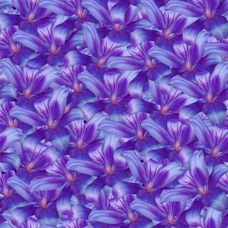 Free Seamless Infinite Background Floral. Purple-blue Flowers Lily. For Design And Printing. Background Of Natural Flowers. Stock Photos - 91275613