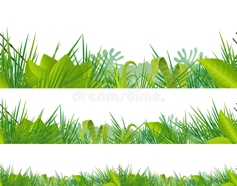 Seamless Jungle And Tropical Vegetation vector illustration