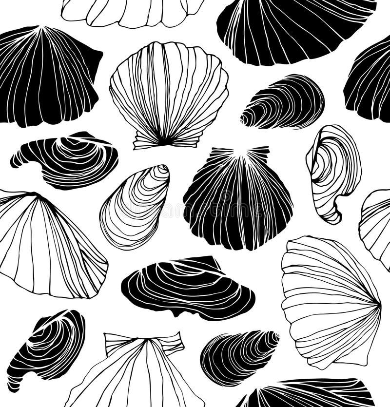 Seamless marine pattern with shells. Black and white graphic background with seashells. vector illustration