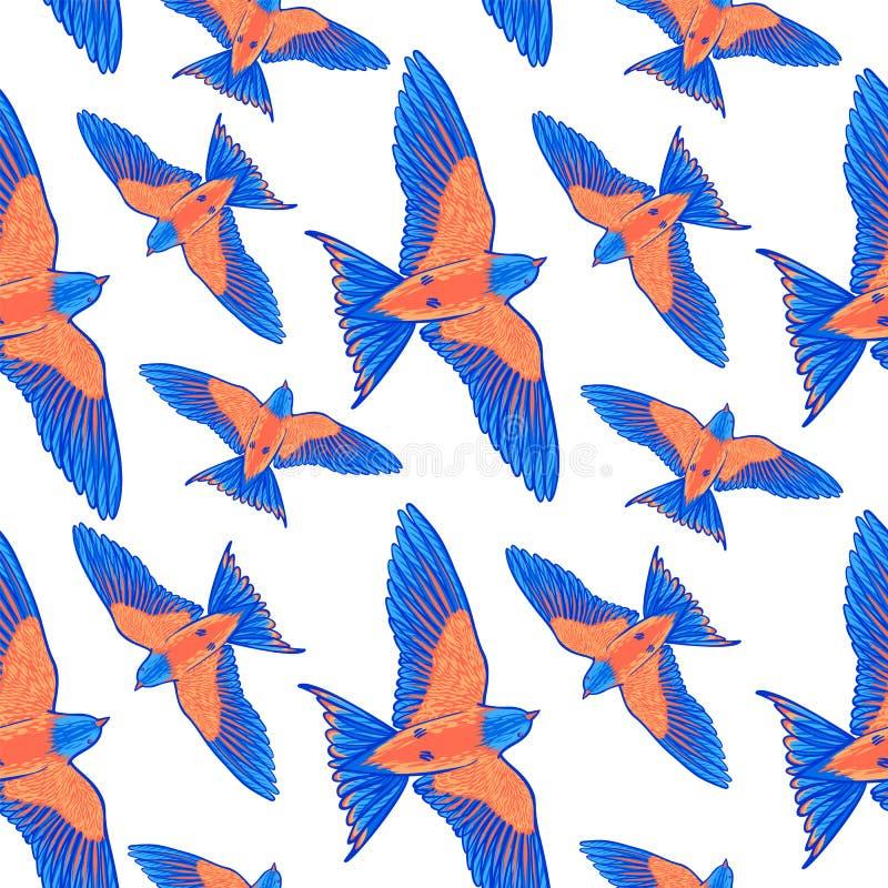 seamless modell Blå tropisk fågel på en vit bakgrund paradis tenerife för fågelkanariefågelö Hand drog borsteslaglängdbeståndsdel royaltyfri illustrationer
