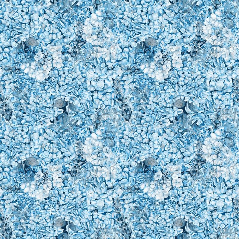 seamless modell Blå vanlig hortensia för vattenfärg, lavendel, vinbär arkivbild