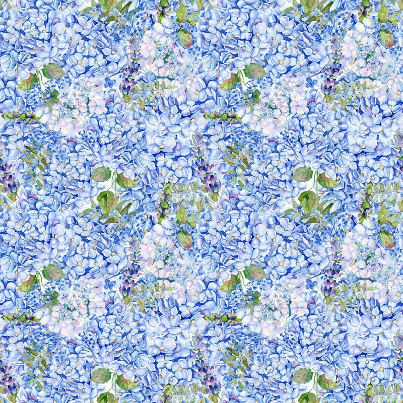 seamless modell Blå vanlig hortensia för vattenfärg, lavendel, vinbär royaltyfri fotografi