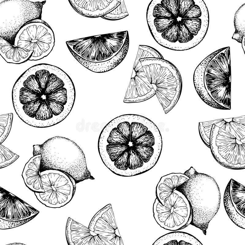 Seamless modell för vektor av citrusfrukter Apelsin, citron, limefrukt och blodiga orange skivor vektor illustrationer