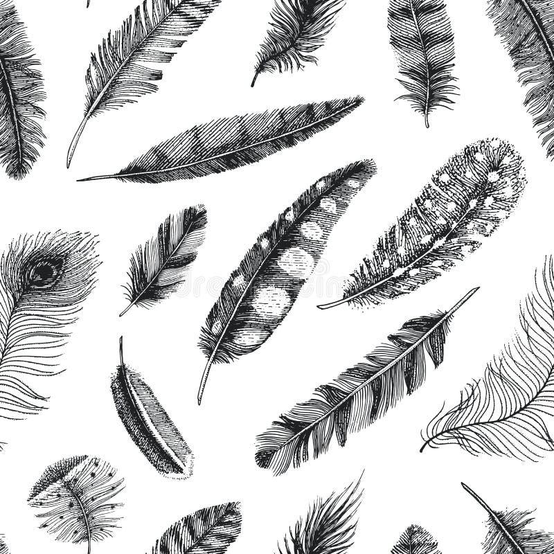 seamless modell Lantliga realistiska fjädrar av olika fåglar, ugglor, påfåglar, änder inristad hand som dras i gammalt vektor illustrationer