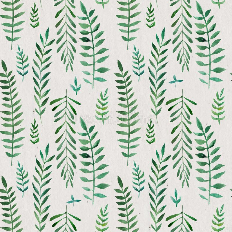 Seamless natural botanical watercolor pattern stock illustration