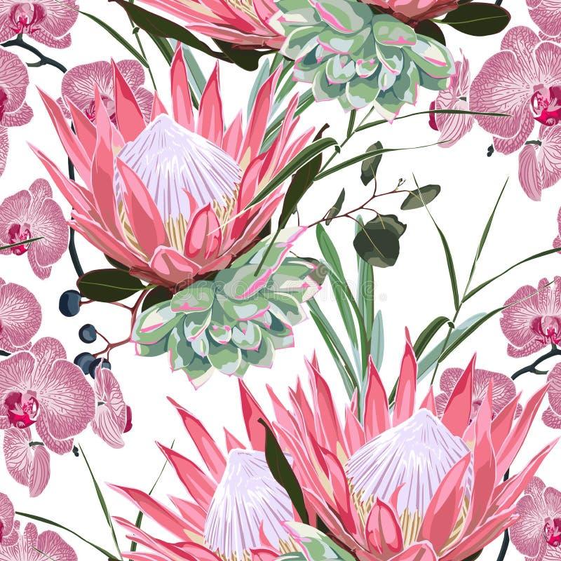 seamless naturmodell Utdragen tropisk sommarbakgrund för hand: suckulent, örter och rosa protea, orkidéblommor stock illustrationer