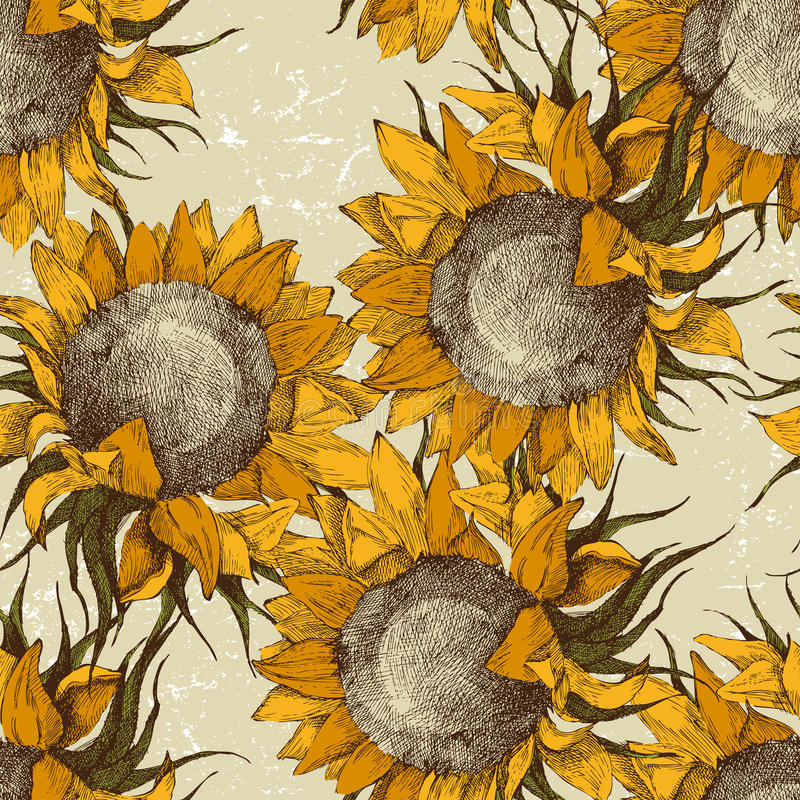 Free Seamless Ornament With Sunflowers Royalty Free Stock Images - 23043969