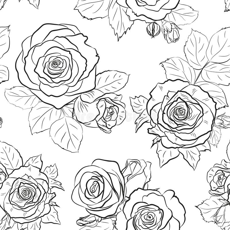 Seamless outline background made of rose buds and leaves. Endless pattern for floral design. Black and white. royalty free illustration