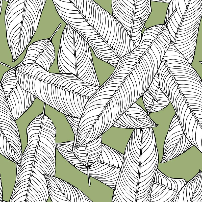 Seamless pattern abstract black and white leaves on green background, foliage vector, illustration stock illustration
