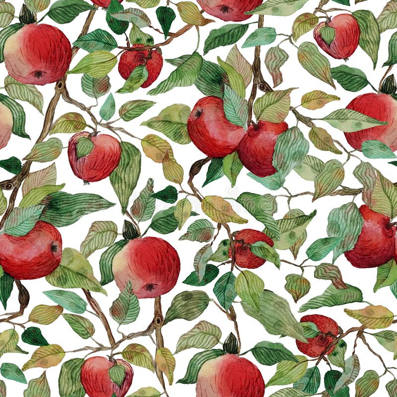 Seamless pattern apple tree branch with red apples watercolor stylized illustration vector illustration