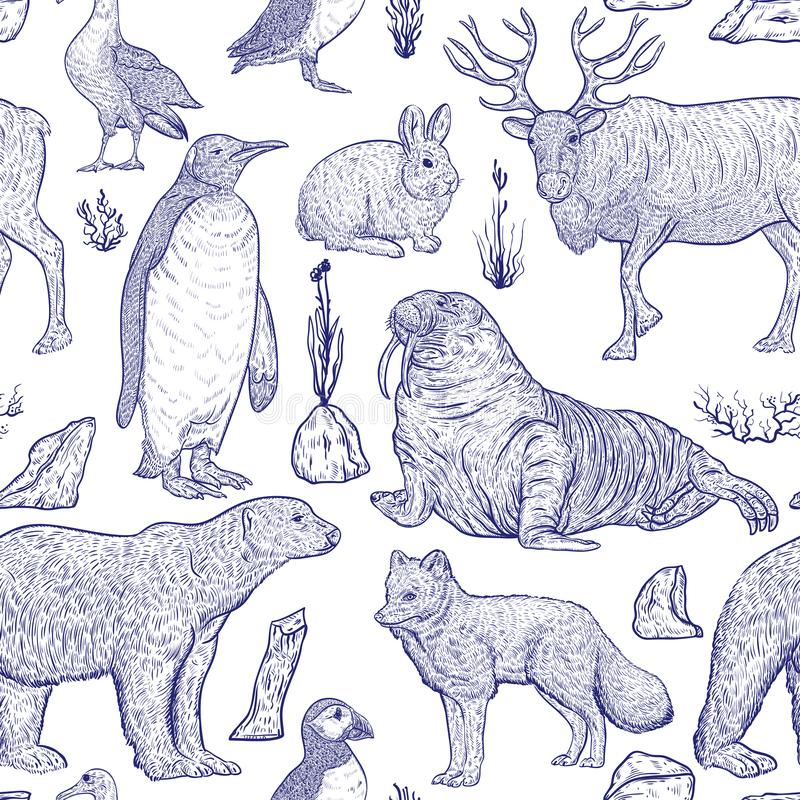 Seamless pattern with arctic animals. royalty free illustration