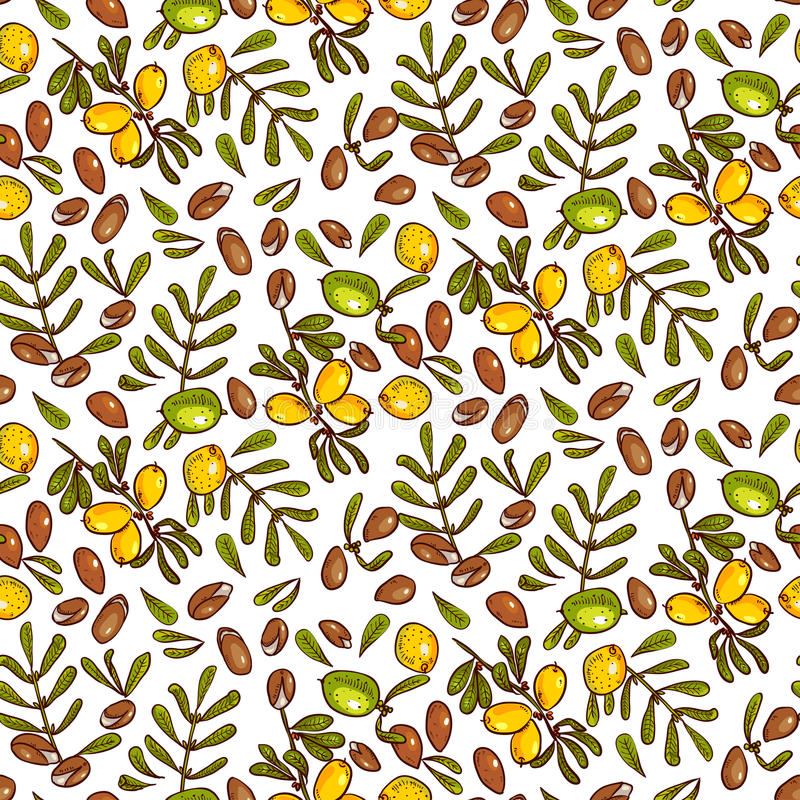 Seamless pattern Argan Oil. Seamless pattern branches, leaves, nuts, fruits, argan tree (ironwood). Suitable for packing Argan oil creams. Vector illustration of stock illustration