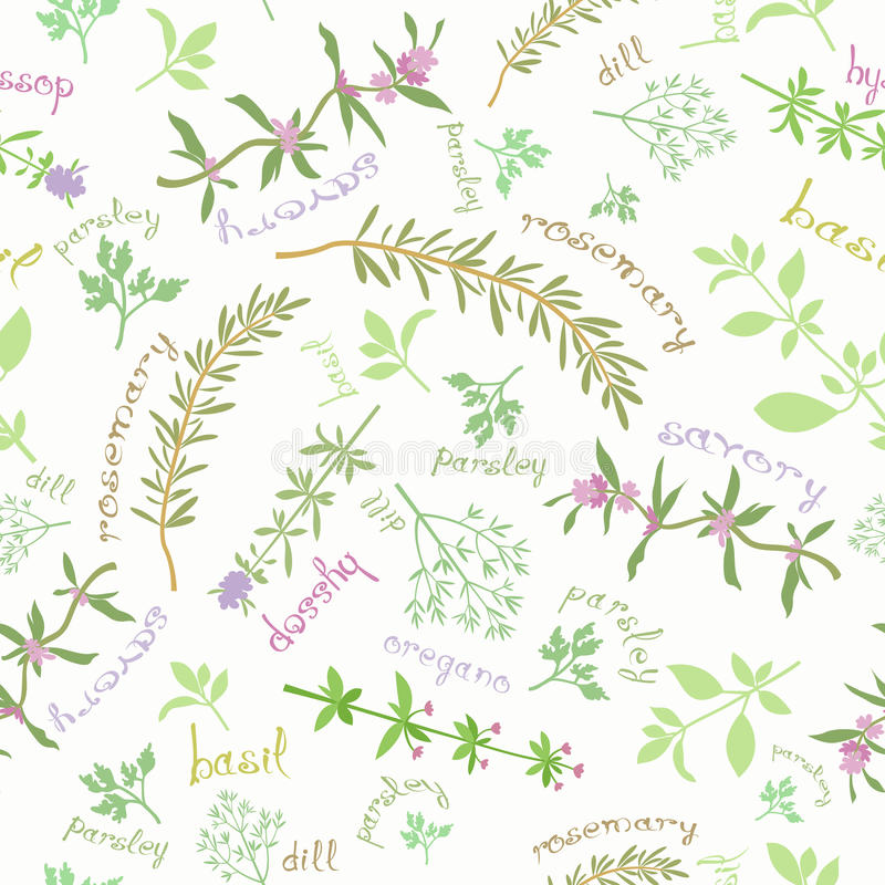 Seamless Pattern With Aromatic Herbs And Cute Titles. Seamless pattern with various aromatic herbs. Different spice plants and hand drawn titles. Soft tender royalty free illustration