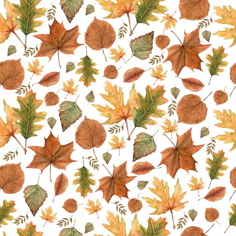 Seamless pattern of Autumn fall leaves,natural branches, colorful herbs, hand drawn in watercolor. Beauty elegant background royalty free illustration
