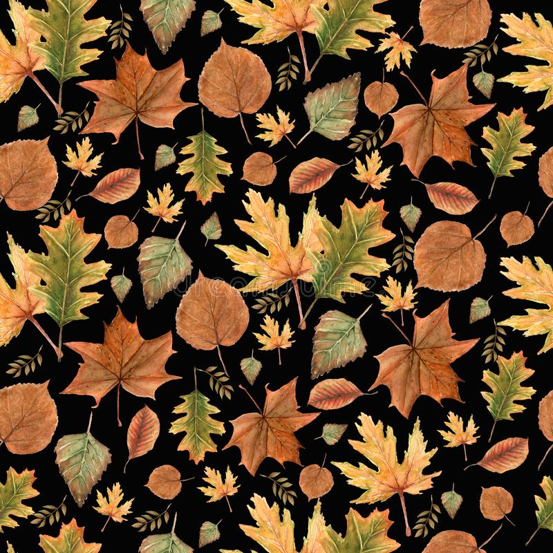 Seamless pattern of Autumn leaves,natural branches, colorful herbs, hand drawn in watercolor.Beauty elegant background royalty free stock photo