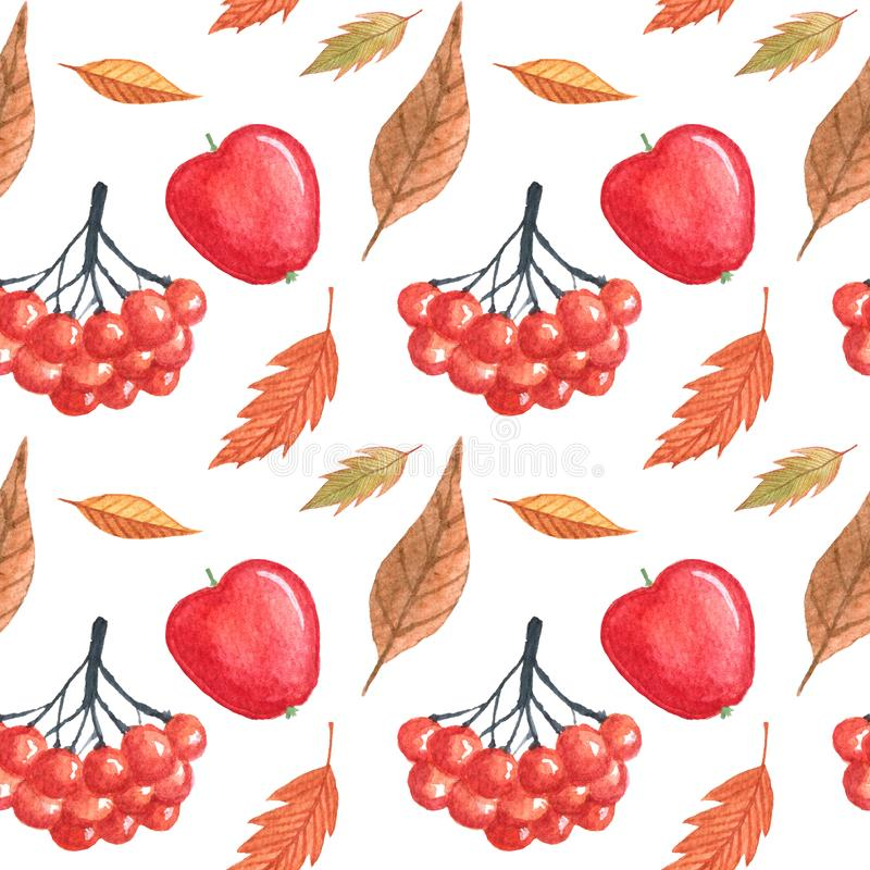 Seamless pattern with autumn leaves and rowan drawing by watercolor, hand drawn elements vector illustration