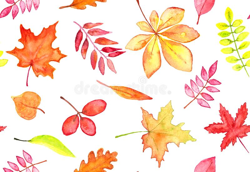 Seamless pattern of autumn leaves watercolor, red, orange and yellow leaves on white background stock photos
