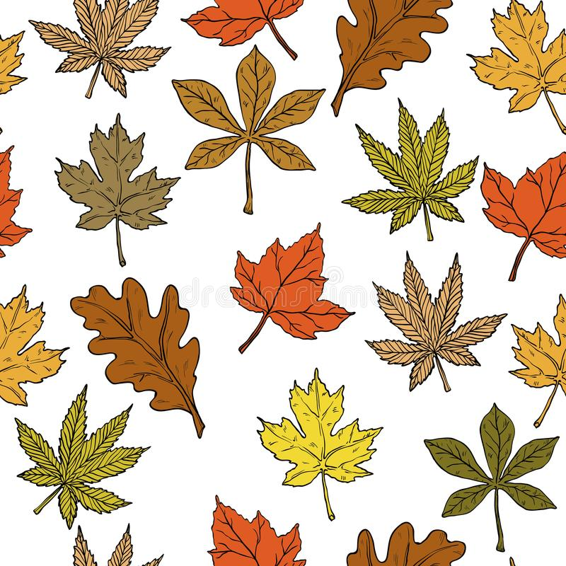 Seamless pattern with autumn leaves on white background. royalty free illustration