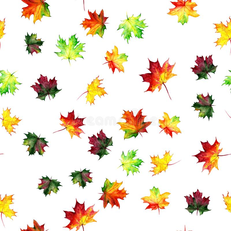 Seamless pattern with autumn maple leaves. Watercolor design for fabric, packaging, paper. Hand drawn. Seamless pattern with autumn maple leaves. Watercolor royalty free illustration