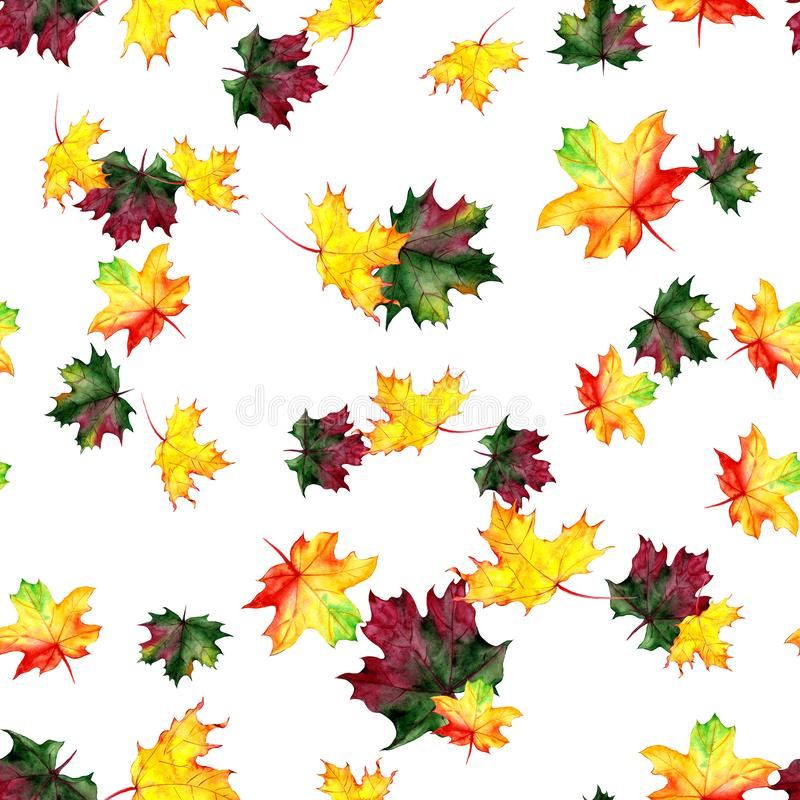 Seamless pattern with autumn maple leaves. Watercolor design for fabric, packaging, paper. Hand drawn. Seamless pattern with autumn maple leaves. Watercolor stock illustration