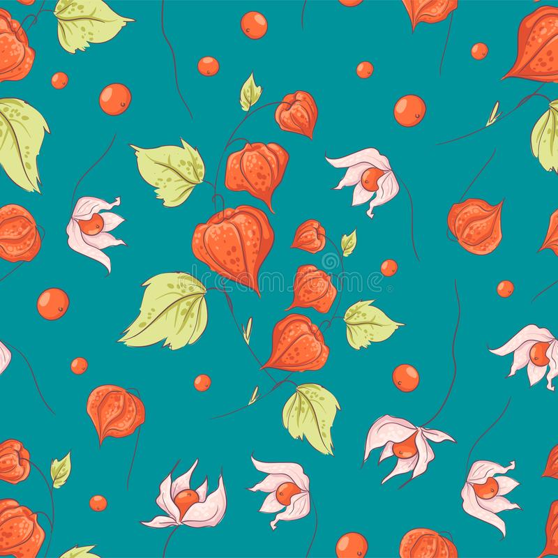 Seamless pattern autumn physalis flowers, leaves and fruits. Vector illustration stock illustration