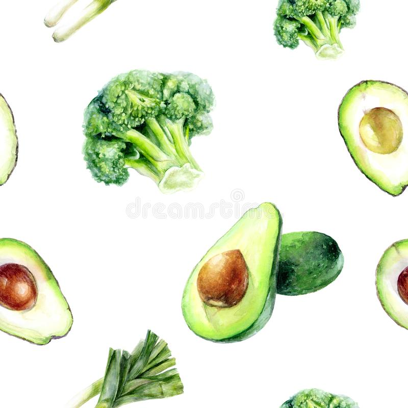 Watercolor hand drawn avocado broccoli isolated seamless pattern. royalty free illustration