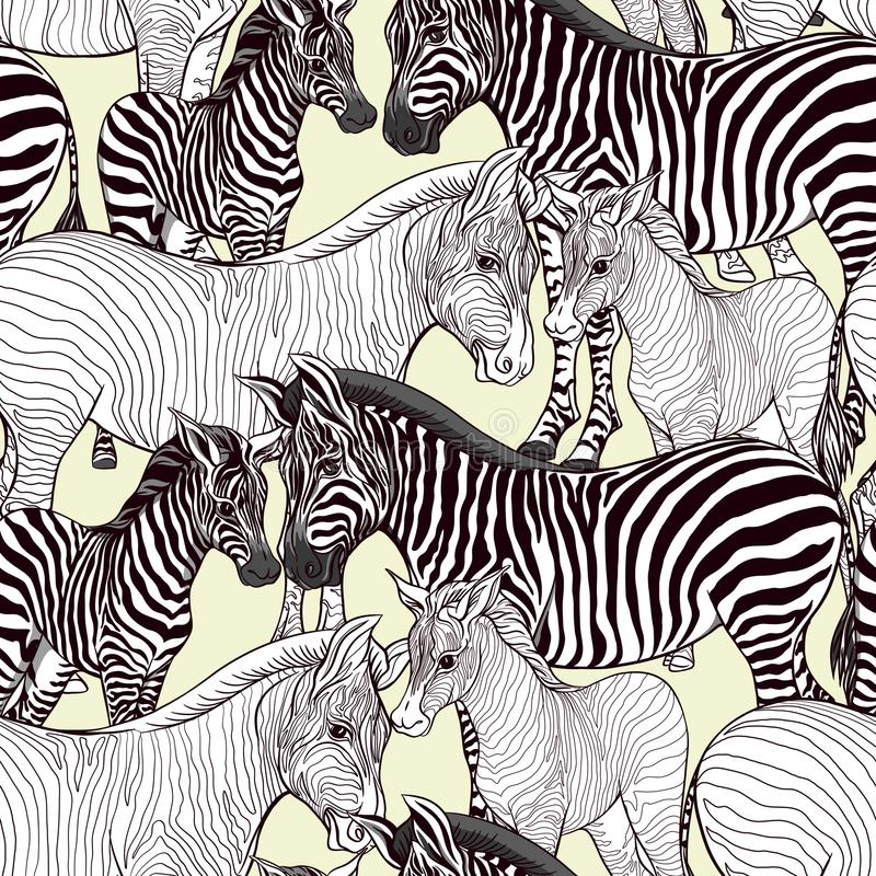 Seamless pattern, background with adult zebra and zebra cub. Vector illustration. royalty free illustration