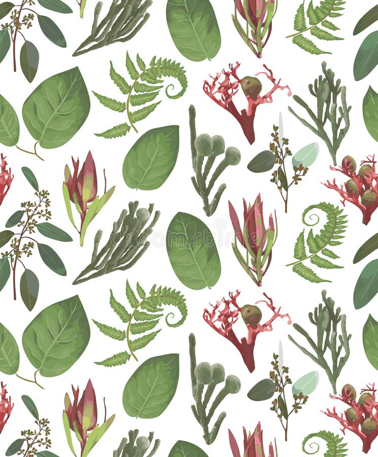 Seamless pattern, background, texture print vector. Pink leucadendron flowers, gaultheria,salal, jatropha, brunia, green fern,. Seamless pattern background royalty free illustration