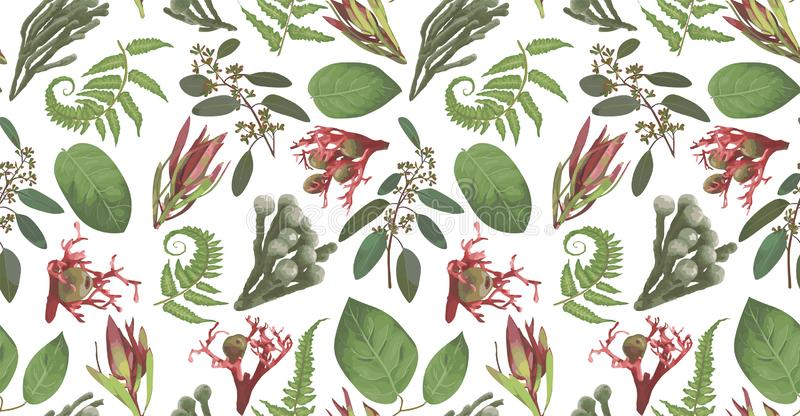 Seamless pattern, background, texture print vector. Pink leucadendron flowers, gaultheria,salal, jatropha, brunia, green fern,. Seamless pattern background vector illustration