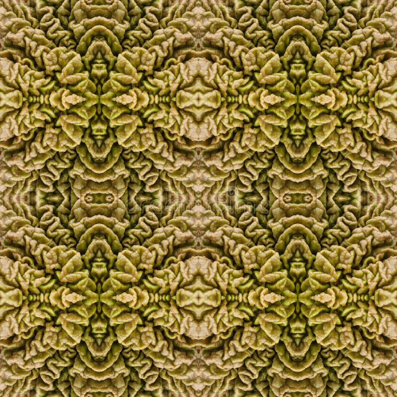 Seamless pattern based on green leaf of a plant. Selected focus stock images