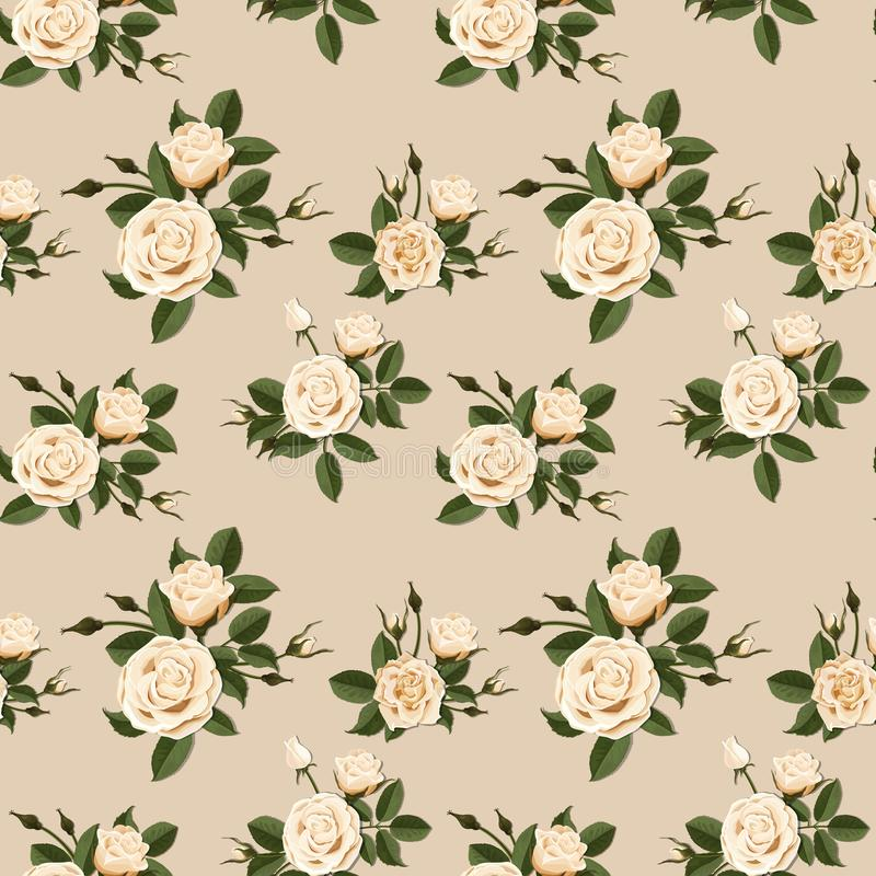 Seamless pattern with beige roses. Vector. royalty free stock photos
