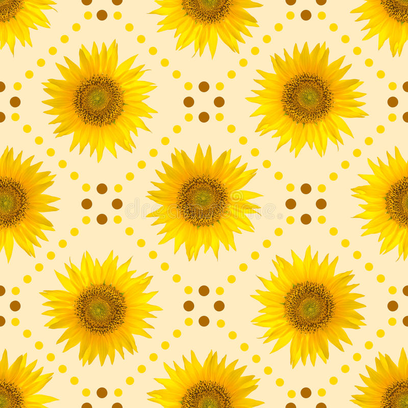 Seamless pattern with big bright sunflowers and brown dots on yellow background. royalty free stock photos