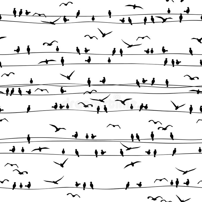 Seamless pattern of birds on wires stock illustration