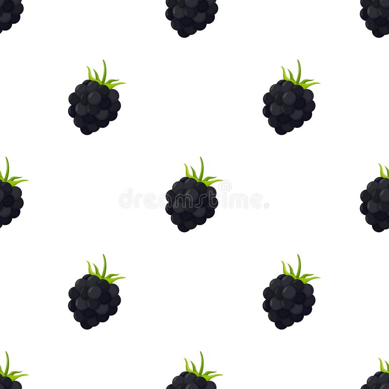 Seamless pattern with blackberry on white background. For background, promotion, sale, template, flyer, banner, poster and other vector illustration