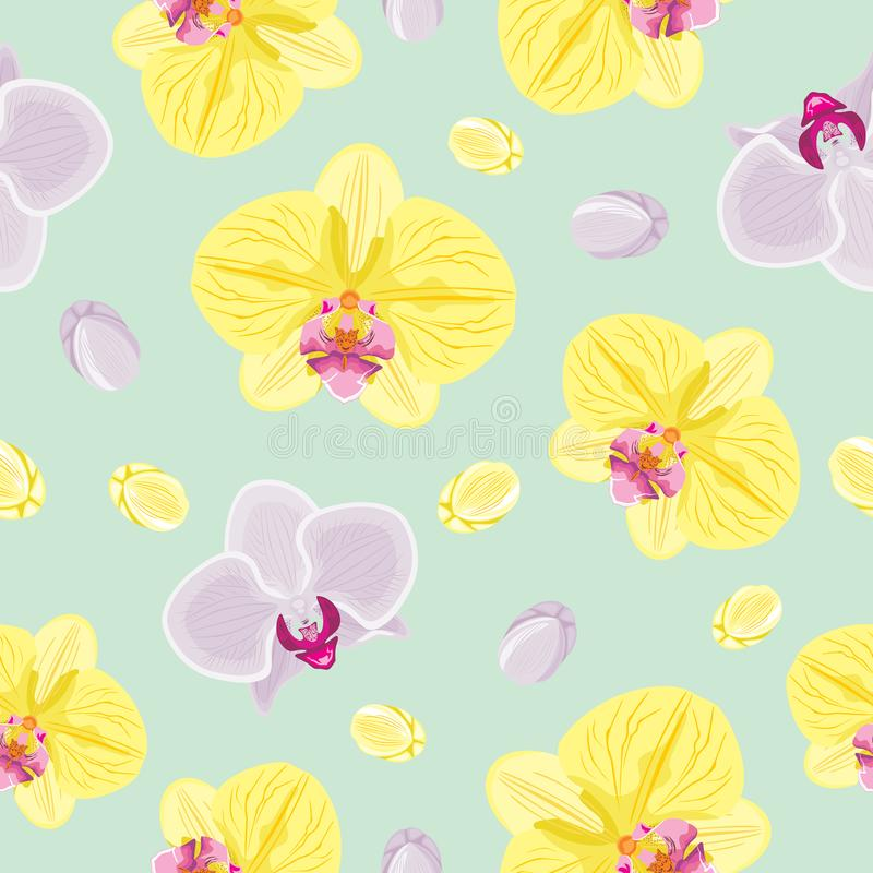 Seamless pattern with blooming orchids stock photo