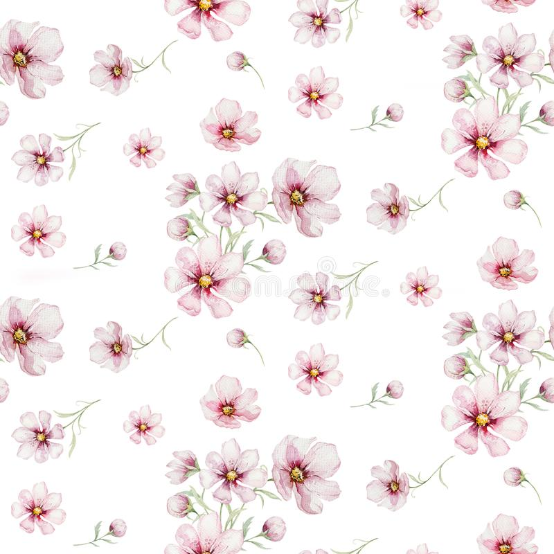 Seamless pattern of blossom pink cherry flowers in watercolor style with white background. Summer blooming japanese vector illustration