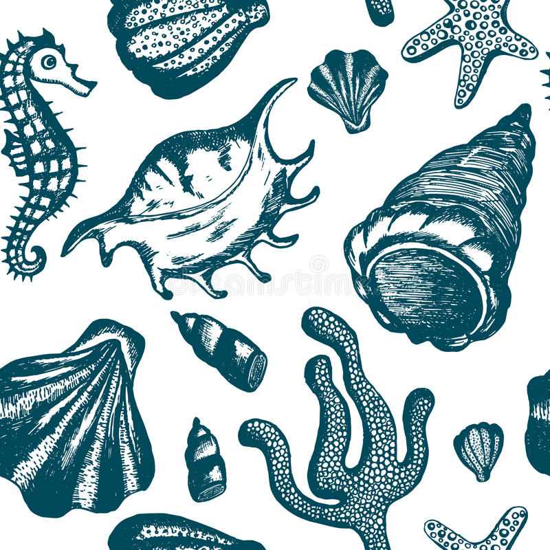 Seamless pattern with blue hand drawn seashells. Marine background. Vector vintage texture with seashells, coral, sea horse. Eamless pattern with blue hand vector illustration