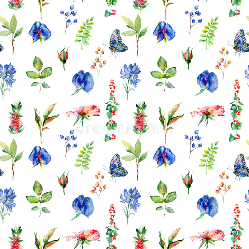 Seamless pattern with blue Sweet pea, Lathyrus odoratus, leaves. Watercolor flowers. Vintage. Can be used for gift wrapping paper and other backgrounds stock illustration