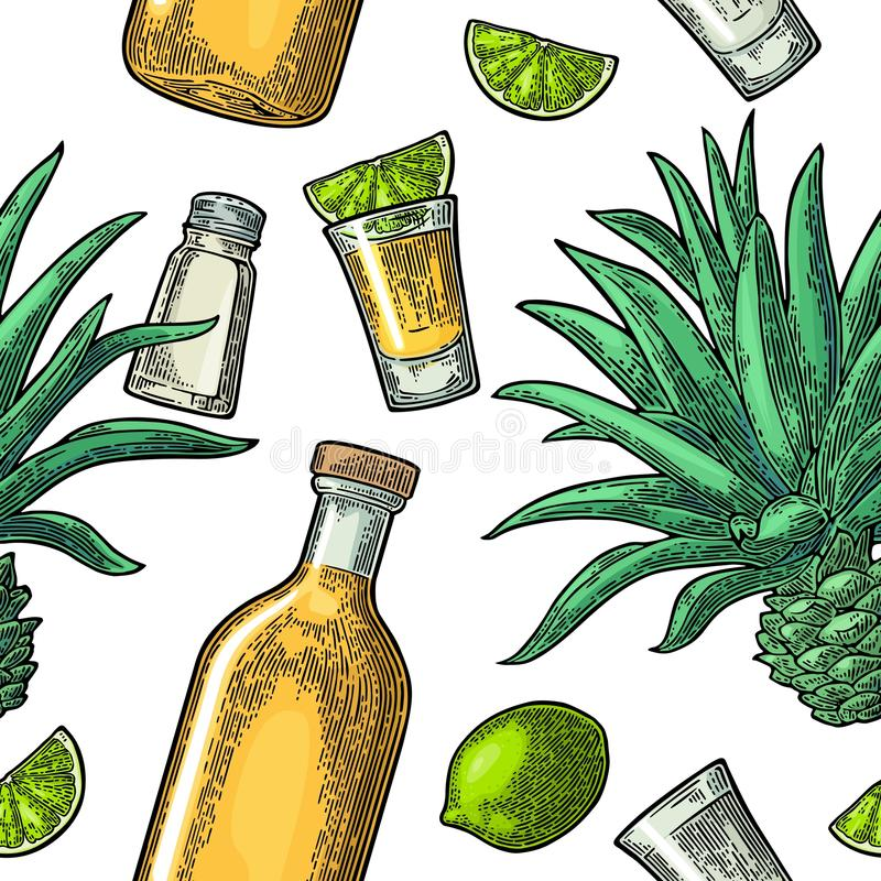 Seamless pattern of bottle, glass tequila, salt, cactus and lime vector illustration