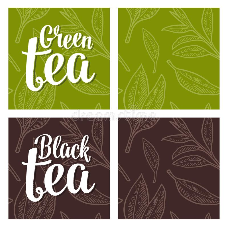 Seamless pattern tea with branch and leaf. Vector vintage engraving. Seamless pattern with branch and leaf. Lettering Black Green Tea. Vector color vintage stock illustration