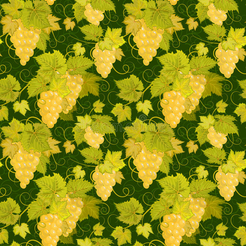 Seamless pattern with branches, leaves and berries of grapes on a black background. Vector. Seamless pattern with branches, green leaves and yellow berries of royalty free illustration
