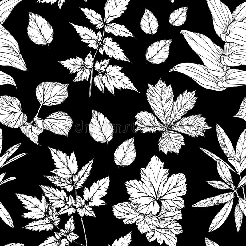 Seamless pattern with branches and leaves, hand drawn design elements. Black and white stock illustration