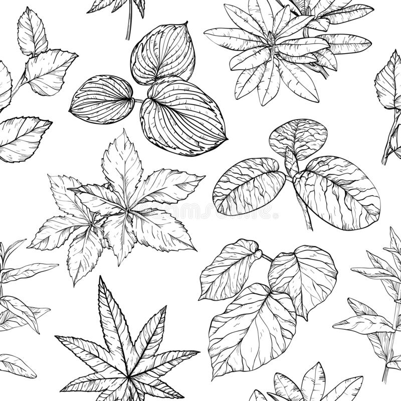 Seamless pattern with branches and leaves, hand drawn design elements stock illustration