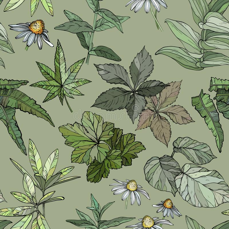 Seamless pattern with branches and leaves, hand drawn design elements royalty free illustration
