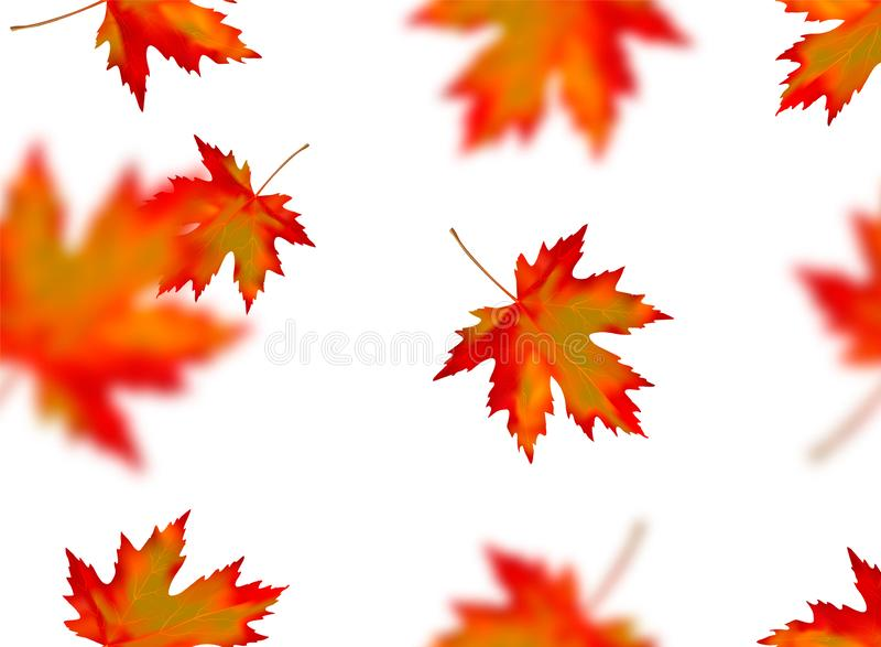 Seamless pattern with bright orange yellow red blurred falling maple leaves isolated on white background. Seasonal banner, cover,. Wallpaper or autumn holiday stock images