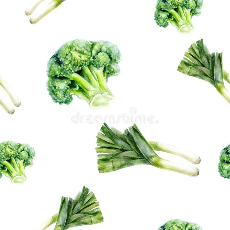 Watercolor hand drawn broccoli leek isolated seamless pattern. stock illustration