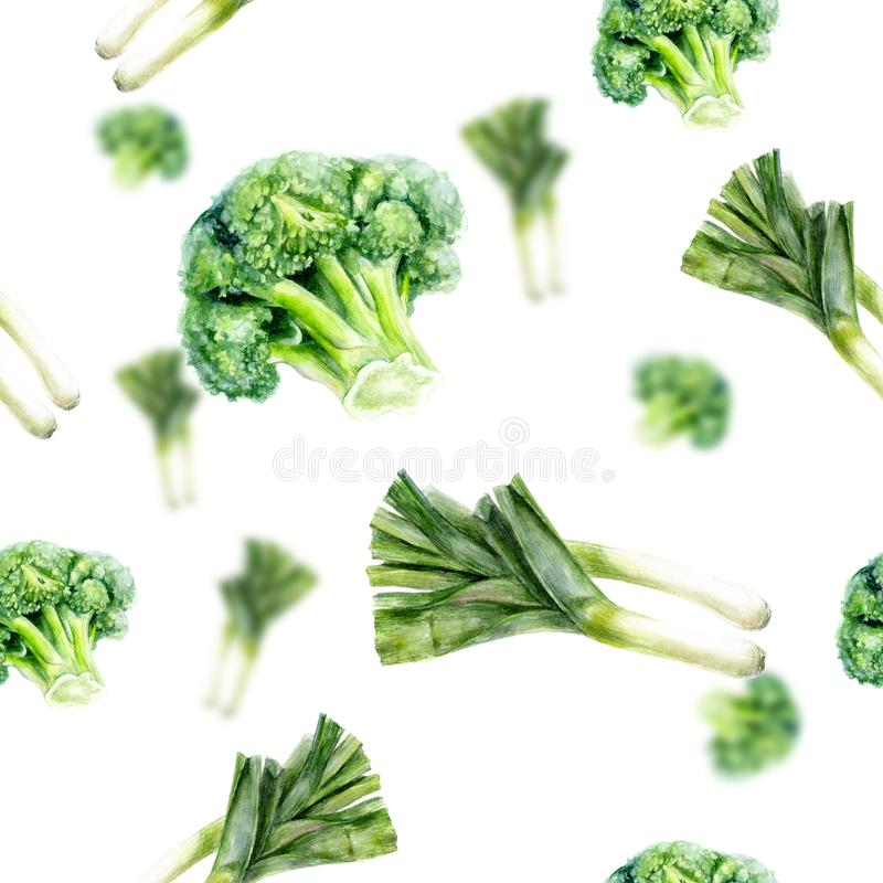 Watercolor hand drawn broccoli leek isolated seamless pattern. royalty free illustration