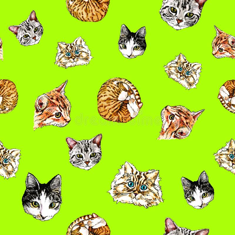 Seamless pattern with cats on a lime green background. royalty free stock photos
